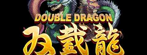 PAX EAST 2011: Say Whaaaat?! Double Dragon on iPhone